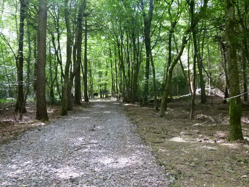 Woodland for sale hertfordshire