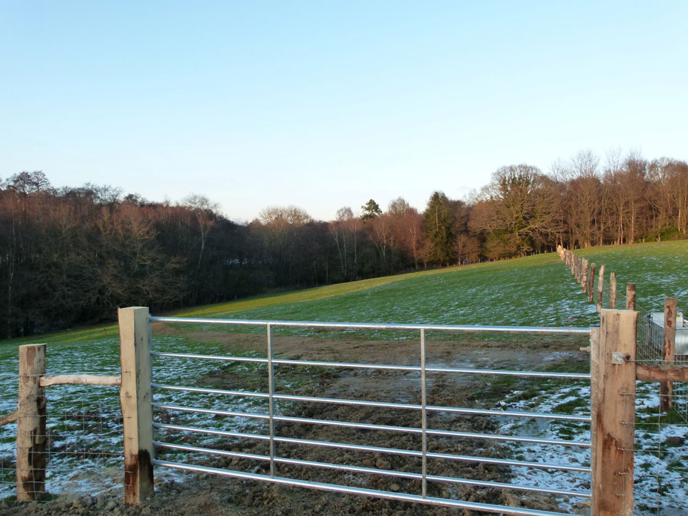 Combe Paddock, near Pease Pottage and Colgate, West Sussex. 1.72 acres of grassland with access to a water trough in a rural location. £39,000 (freehold)
