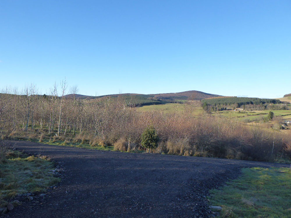 Shiels Wood, Midmar, near Torphins, Aberdeenshire. 7.87 acres of young plantation hardwoods for £39,000 (freehold)